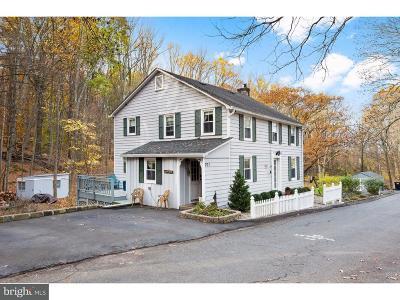 Clinton Twp NJ Single Family Home For Sale: $389,900