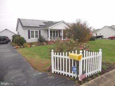 Hurlock Single Family Home For Sale: 110 Dogwood Drive