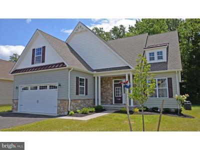 Felton Single Family Home For Sale: 168 High Meadow Drive