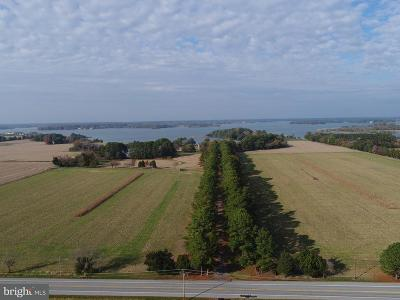 Bozman, Claiborne, Cordova, Easton, Mcdaniel, Neavitt, Newcomb, Oxford, Queen Anne, Royal Oak, Saint Michaels, Sherwood, St Michaels, St. Michaels, Tilghman, Trappe, Wittman, Wye Mills Farm For Sale: 5252 Long Point Farm Drive
