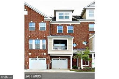 Bowie Rental For Rent: 12913 Midnights Delight Drive #102B