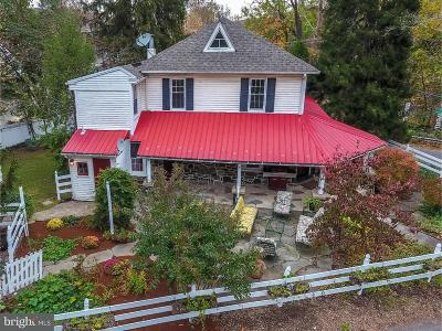 New Hope Single Family Home For Sale: 4976 River Road