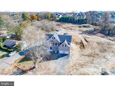 Hockessin Single Family Home For Sale: 1605 Brackenville Road