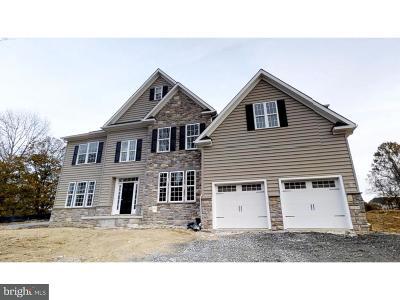 Hockessin Single Family Home For Sale: 1609 Brackenville Road