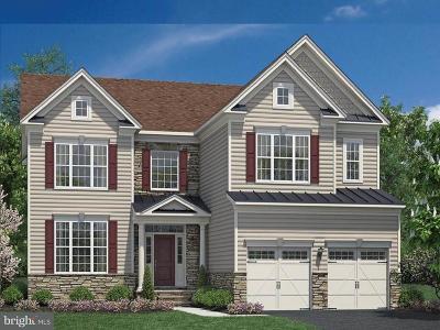 Gainesville, Haymarket Single Family Home For Sale: 4525 Geyser Creek Loop