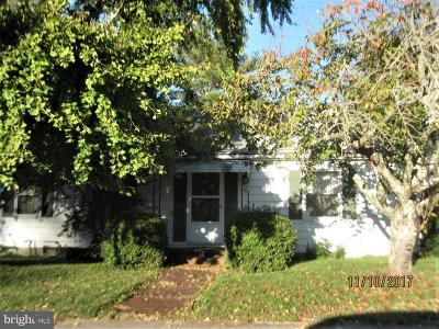 Vienna Single Family Home For Sale: 103 Church Street