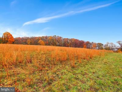 Baltimore County Residential Lots & Land For Sale: 21629 Keeney Road