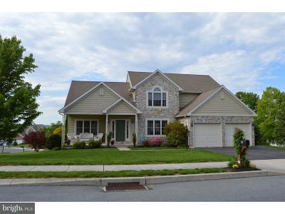 Ephrata Single Family Home For Sale: 104 Valerie Avenue