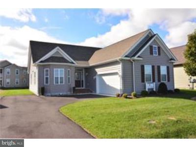 Milford Single Family Home For Sale: 27 Homestead Boulevard