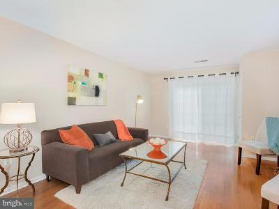 Arlington Townhouse For Sale: 2050 Calvert Street N #304