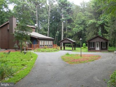 Felton Single Family Home For Sale: 617 Fork Landing Road