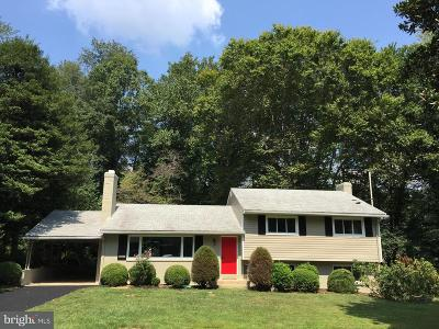 Annandale Single Family Home For Sale: 8518 Chapel Drive