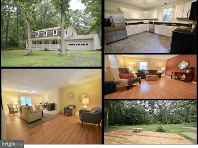 Stevensville Single Family Home For Sale: 116 Margaret Drive