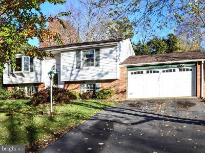 Loudoun County Single Family Home For Sale: 126 Magnolia Road