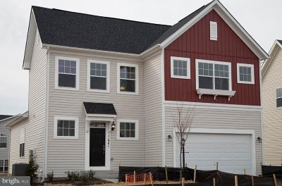 Bristow Single Family Home For Sale: Blazing Star Loop