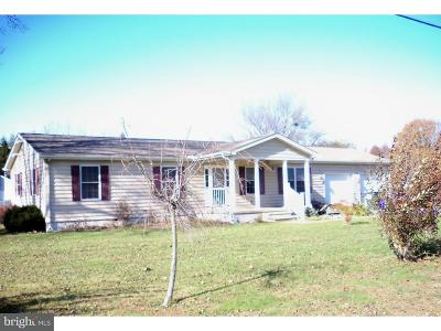Hartly Single Family Home For Sale: 555 Hazlettville Road