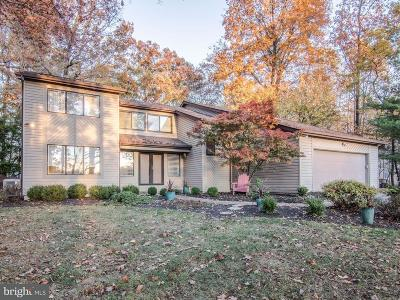 Reisterstown Single Family Home For Sale: 315 Delight Meadows Road