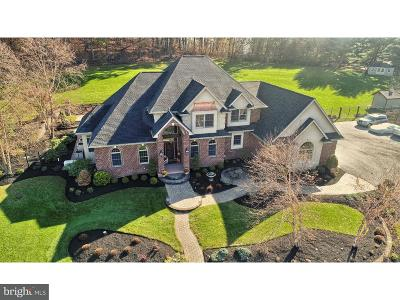 Berks County Single Family Home For Sale: 212 Hillview Circle