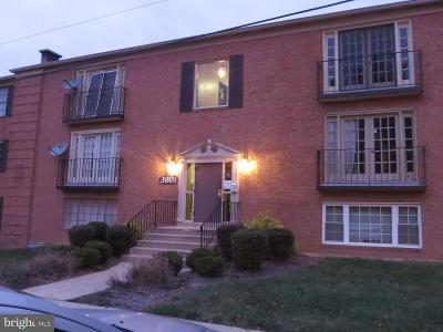 Suitland Rental For Rent: 3801 Swann Road #3
