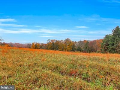 Baltimore County Residential Lots & Land For Sale: 21627 Keeney Road