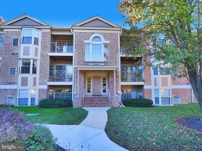 Abingdon Single Family Home Active Under Contract: 203 Windmille Pointe 2d Court #2D