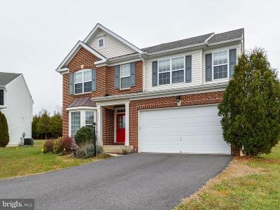 Orange County Single Family Home For Sale: 35312 Balmoral Drive