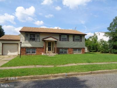 Glassboro Single Family Home For Sale: 317 Overbrook Avenue
