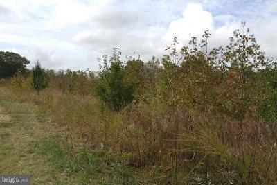 Waldorf Residential Lots & Land For Sale: Reed Proctor Subdivision 4.358