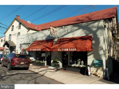 New Hope PA Commercial For Sale: $3,500