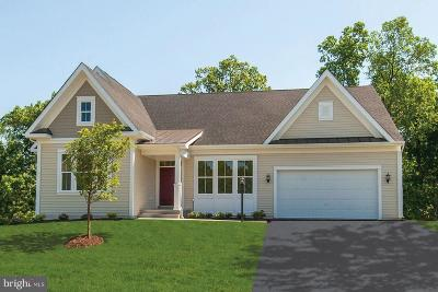 Falling Waters Single Family Home For Sale: 161 Tributary Trail