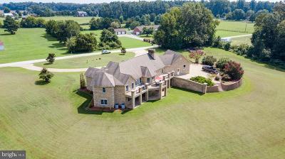 Hanover Single Family Home For Sale: 8303 Owl Lane