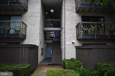 Fairfax County, Fairfax City, Loudoun County, Montgomery County, Prince George County, Prince William County, Frederick County, Fredericksburg City Condo For Sale: 10028 Stedwick Road #303
