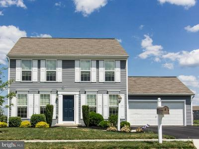 Camp Hill, Mechanicsburg Single Family Home For Sale: 111 Stone Run Drive