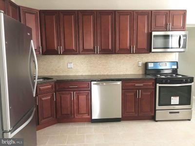 Philadelphia Single Family Home For Sale: 4503 Knorr Street