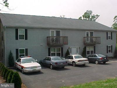 Shenandoah County Rental For Rent: 329 Church Street #APT. #3
