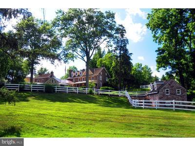 Montgomery County Single Family Home For Sale: 1665 Wood Bridge Lane