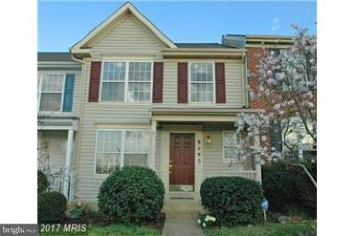 Bristow Rental For Rent: 9595 Scales Place