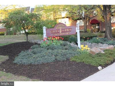 Single Family Home For Sale: 6901-29 Valley Avenue #M1