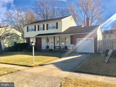 New Castle Single Family Home For Sale: 118 Dutton Drive