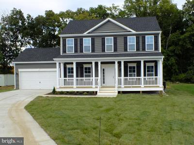 Martinsburg Single Family Home For Sale: 93 Einstein Way