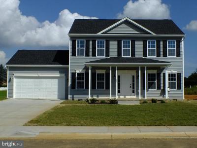 Hedgesville Single Family Home For Sale: 283 Gordon Drive
