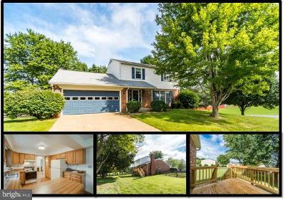 Fredericksburg Single Family Home For Sale: 12001 Grantwood Drive
