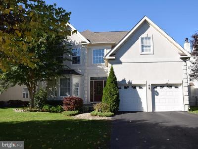 Ashburn Single Family Home For Sale: 20227 Hidden Creek Court
