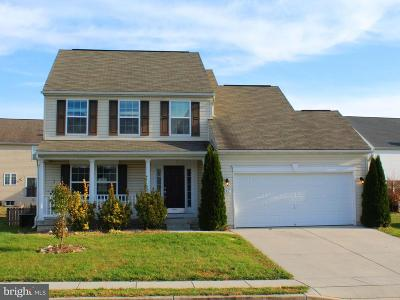 Falling Waters Single Family Home For Sale: 267 Brandenburg Drive