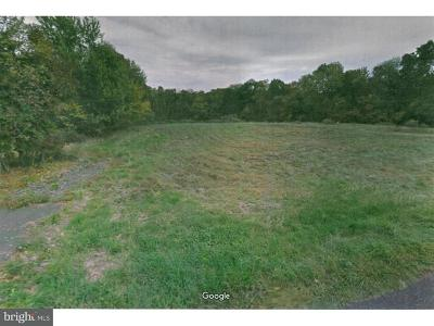 Bucks County Residential Lots & Land For Sale: Lot 2 Frogtown Road #2