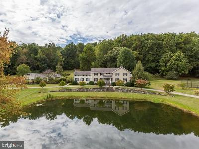 Middletown Single Family Home For Sale: 8730 Fox Gap Road