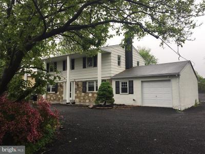 Warrington Single Family Home For Sale: 989 Easton Road