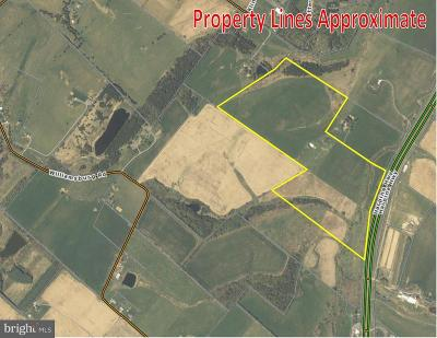 Rockingham County Residential Lots & Land For Sale: Harpine Highway