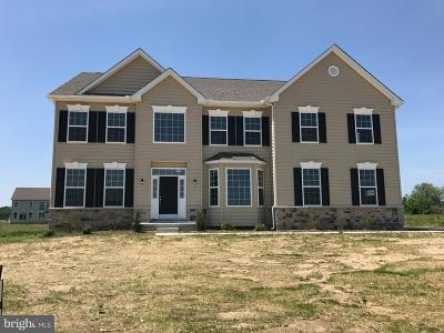 Smyrna Single Family Home For Sale: 51 Manning Court