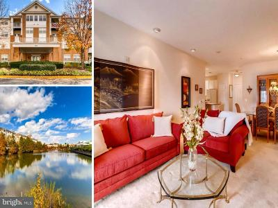 Gambrills Townhouse For Sale: 2605 Chapel Lake Drive #402